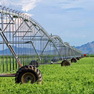 Electrical Solutions Farm & Agriculture Industry